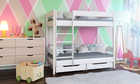 Dino bunk bed for kids 2
