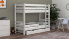 Sophie bunk bed for kids 2